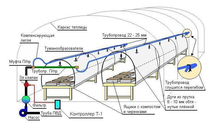 Схема дождевания в теплице