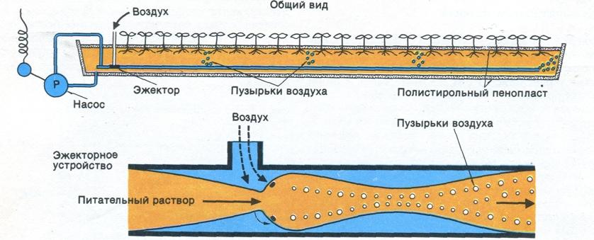 Схема эжекторной гидропонной