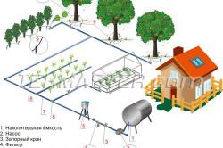 Схема капельного полива огорода своими руками