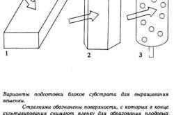 Схема создания блоков субстрата для выращивания вешенки