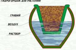 Схема простейшего горшка на основе гидропоники