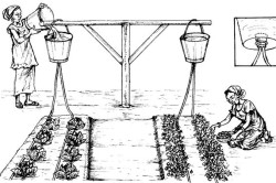 Экономичный вариант капельного полива