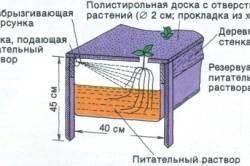 Схема гидропонной установки с периодическим опрыскиванием корней растений