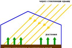 Схема влияния солнца на теплицу