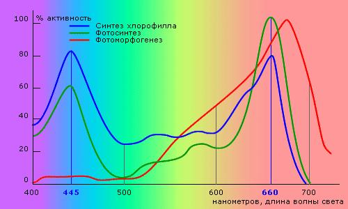 Диаграмма светочувствительности растений