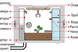 Размеры модуля для выращивания редиски