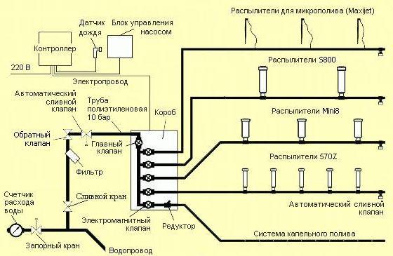 Схема общепринятой