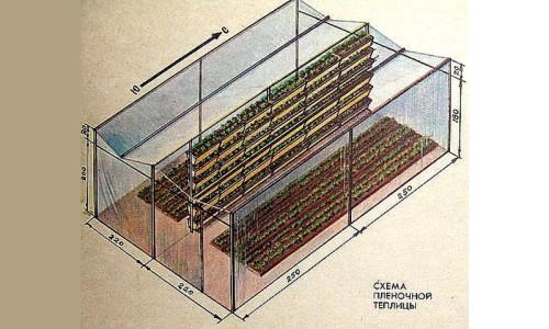 Схема пленочной теплицы