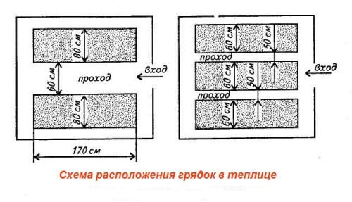 Схема расположения грядок в теплице