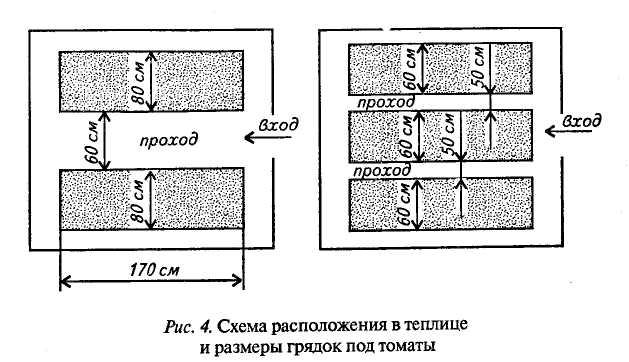 Схема расположения грядок в