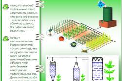 Схема самодельной системы полива для теплицы