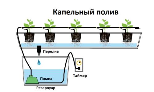 Схема работы системыкапельного полива