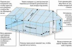 Схема строительства теплицы своими руками