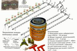 Схема устройства системы автоматического полива