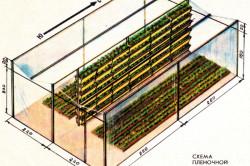 Схема вертикального размещения грядок