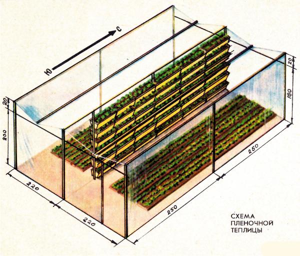 Схема вертикального размещения