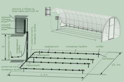 Схема системы капельного полива огурцов в теплице