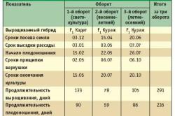 Таблица сроков выращивания огурцов.