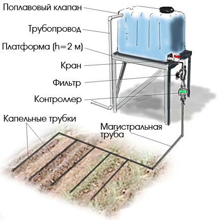 Технология капельного полива в теплице