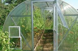 Арочная теплица под помидоры