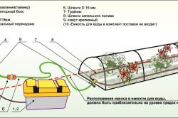 Автономный полив теплицы из поликарбоната.