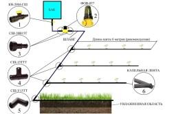 Схема сборки системы капельного полива