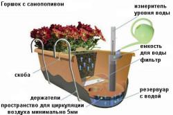 Схема устройства горшка с самополивом
