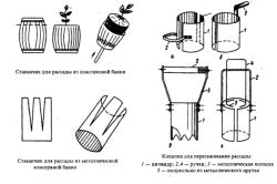 Инструменты для работы с рассадой перца