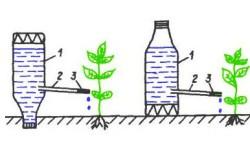 Капельный полив из обычных пластиковых бутылок