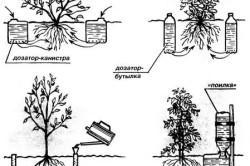 Устройства для подземного дозированного полива