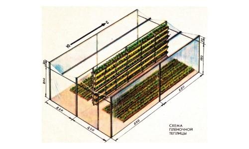 Схема пленочной теплицы (парника) для клубники