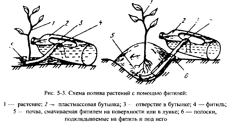 Схема полива растений с