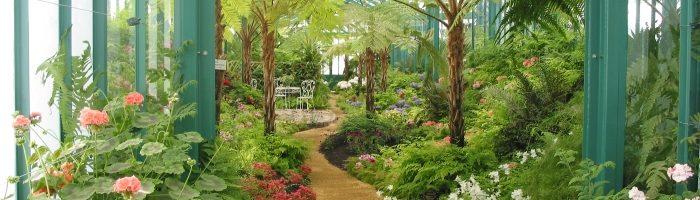 Как построить для цветов оранжерею