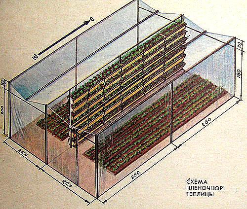 Схема пленочной теплицы для