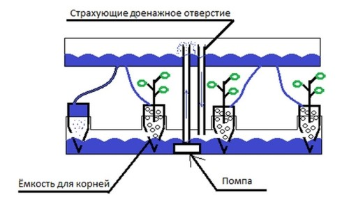 Схема установки системы капельного полива из пластиковых бутылок