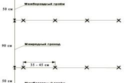Схема выращивания перца на капельном орошении рассаду высаживают ленточным способом по схемам 90+50х35-45 см или 70+70х35-45 см.