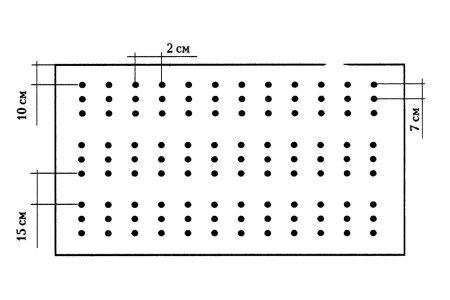 Особенности посадки лука