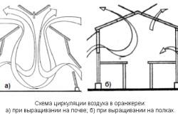 Схема циркуляции воздуха в оранжереи.