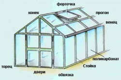 Схема устройства деревянной теплицы