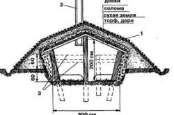 Схема обустройства помещения для выращивания шампиньонов