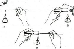 Схема пересева мицелия