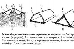 Схема пленочного укрытия капусты.