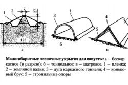 Схема устройства пленочного укрытия капусты