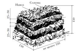 Схема подготовки грядки для выращивания шампиньонов