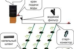 Схема устройства микрокапельного полива