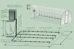 Схема устройства полива грядок в теплице