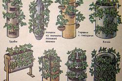 Схема видов емкостей для вертикального выращивания клубники