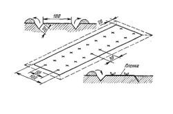 Применение светопроницаемой пленки в качестве мульчи для выращивания огурца