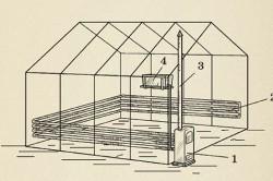 Водяное отопление теплицы: 1. Бойлер. 2. Трубы водяного отопления. 3. Дымовая труба. 4. Напорный резервуар.