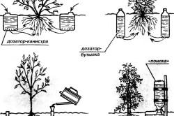 Схемы внутрипочвенного полива огорода
